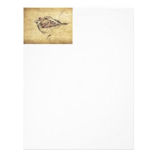 Zen Oriental art pencil sketch wild bird Letterhead