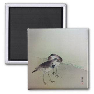 Zen painting plovers magnet