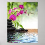zen,peace,pink orchid,beautiful,spa,healing,yoga,c poster