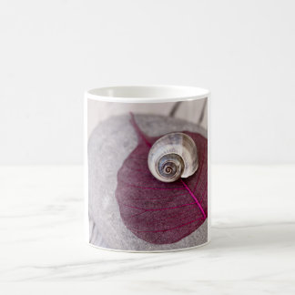 Zen snail shell coffee mug