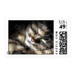 Zen Stamps