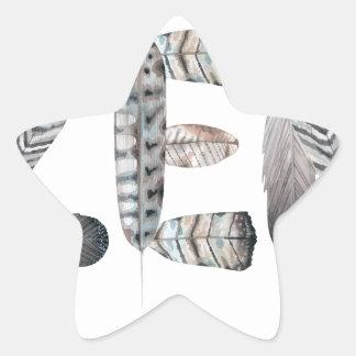 Zen Star Sticker