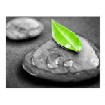 Zen stones post card