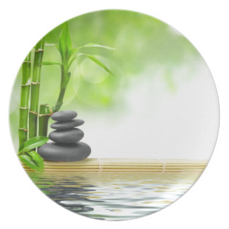 Zen tranquility water garden by healing love party plates