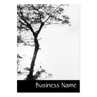 Zen Tree Balance l Nature Photography Chubby Large Business Card
