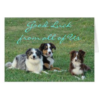 Zena,Kody,Rosie-any occasion-customize Card