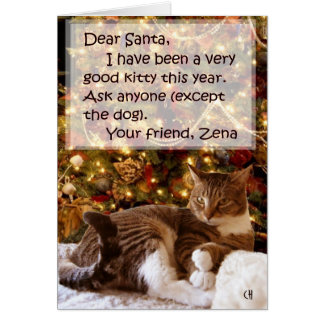 Zena Under the Tree Christmas Card