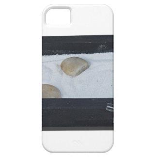 ZenSandGarden011815 iPhone SE/5/5s Case