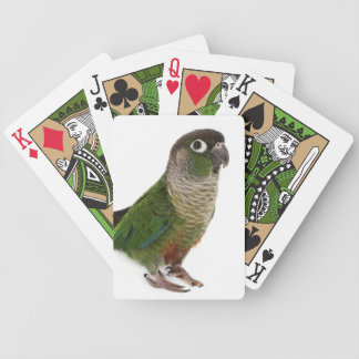 Zeph (green cheek conure) - Playing Cards