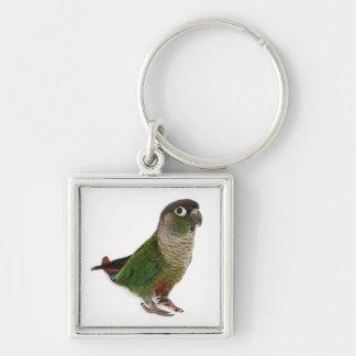 Zeph (green cheek conure) - Square Keychain