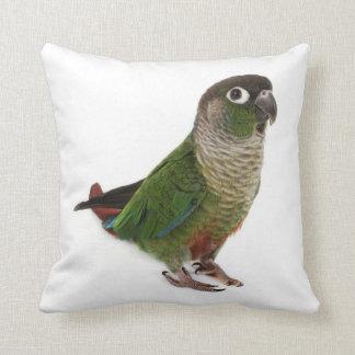 Zeph (green cheek conure) - Throw Pillow