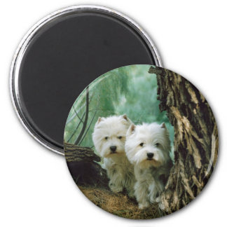 Zest and Donna(Mother and Daughter Take 2) 2 Inch Round Magnet