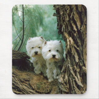 Zest and Donna(Mother and Daughter Take 2) Mouse Pad