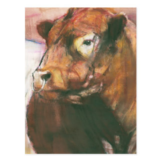 Zeus Red Belted Galloway Bull 2006  2 Postcard