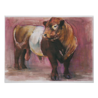 Zeus Red Belted Galloway Bull 2006 Poster
