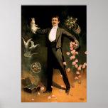 Zig de Zan que se realiza con el conejo y los rosa Poster