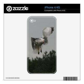 Zig Zag iPhone 4S Decals