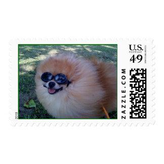 Zig Zag Stamp