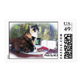 Ziggy Stamp
