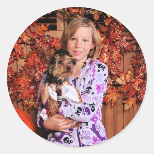 Ziggy - Yorkshire Terrier - Junis Classic Round Sticker