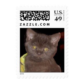 ZigmundCadburySnugglesworth Stamp