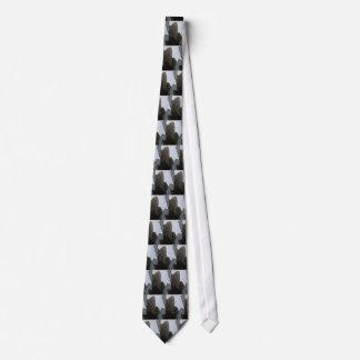 Zigzag - el lazo de los hombres feos de CricketDia Corbatas