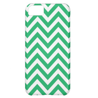 Zigzag Pattern Emerald Spring Green and White Chev iPhone 5C Case