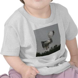 Zigzag Camisetas