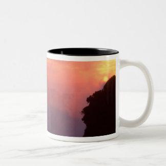 Zimbabwe, Victoria Falls National Park. Misty Two-Tone Coffee Mug