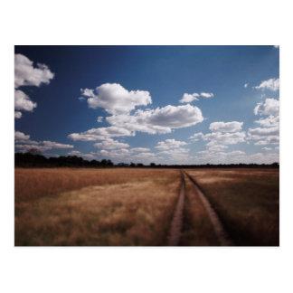 Zimbabwe, View of road near Linkwasha Airstrip 2 Postcard
