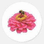 Zinnia and the Bee Round Sticker