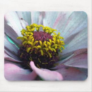 Zinnia Bloom Inside Pastel Pink Mouse Pad
