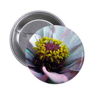 Zinnia Bloom Inside Pastel Pink Pinback Button