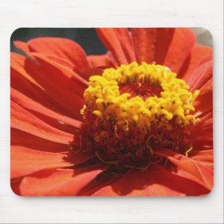 Zinnia Blossom Mouse Pad