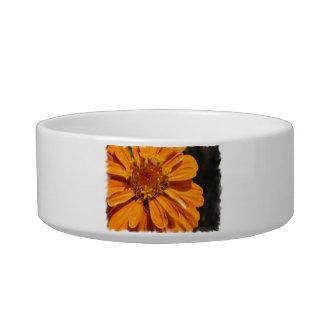 Zinnia Blossom Pet Bowl