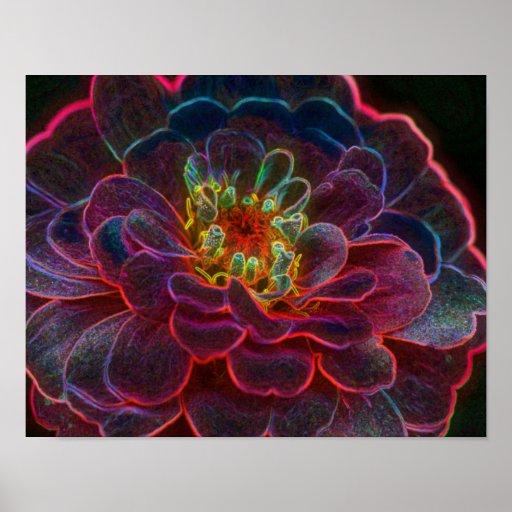 Zinnia Fantasy Flower Art Poster