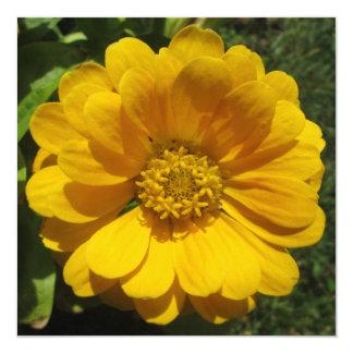 Zinnia Golden Sunlit Flower Card