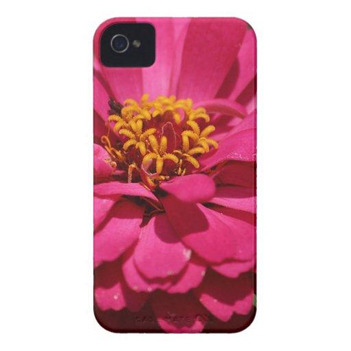 Zinnia iPhone 4 Case-Mate Carcasa