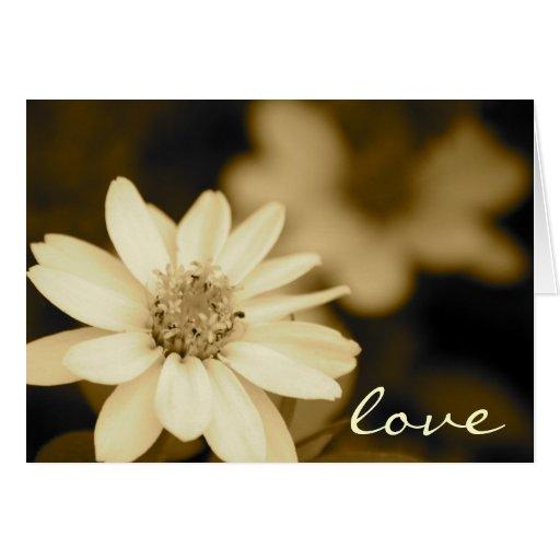 Zinnia Love Card