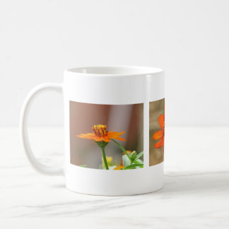 Zinnia Profusion Orange Coffee Mug
