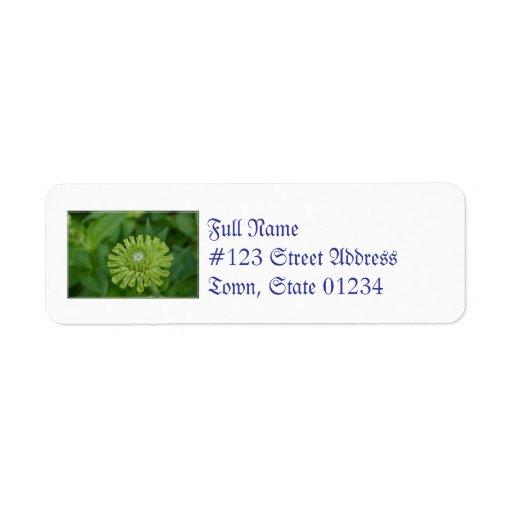 Zinnia verde etiqueta de remite