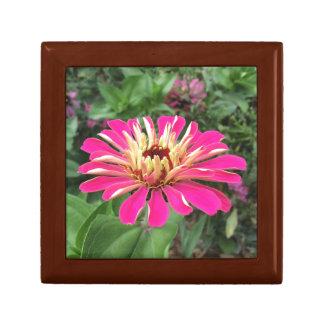 ZINNIA - Vibrant Pink and Cream Jewelry Box