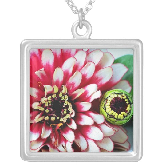 Zinnia Wink Flower Silver Plated Necklace