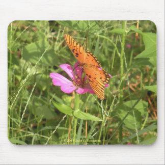 Zinnia y mariposa Mousepad