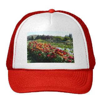 zinnias along pond mesh hats