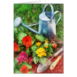 Zinnias and Watering Can Cards