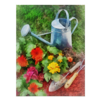 Zinnias and Watering Can Poster