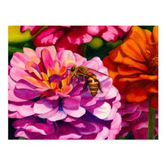 Zinnias con la abeja de trabajador postal