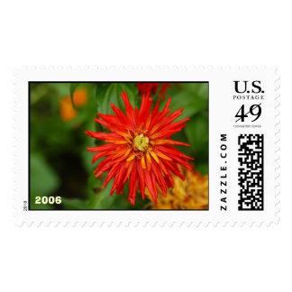 Zinnias Postage Stamp