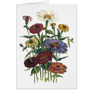 Zinnias Watercolor Get Well Soon Card